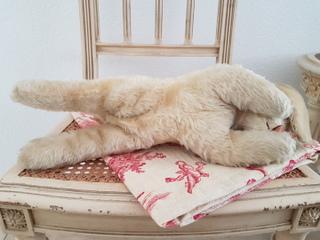 画像4: シュタイフお眠りうさぎ