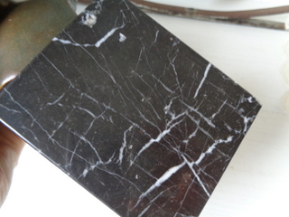 画像5: 石膏胸像